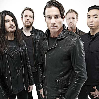 Toseland Contact Information